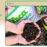 [webinar] Coberturas verdes: a escolha do substrato e a sua importância no sistema